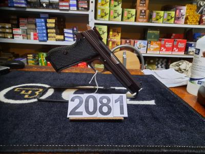 Sig P210-6 calbre 9mm avec deux chargeurs au prix de 1800€